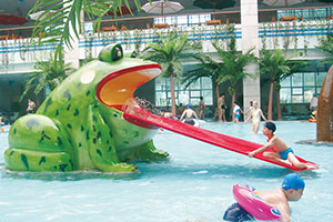 Water Slides For Sale - Water Park Equipment Manufacturer